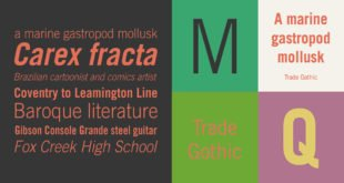 Trade Gothic Font 310x165 - Trade Gothic Font Free Download