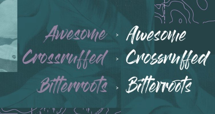 Gloss And Bloom Font - Gloss And Bloom Font Family Free Download