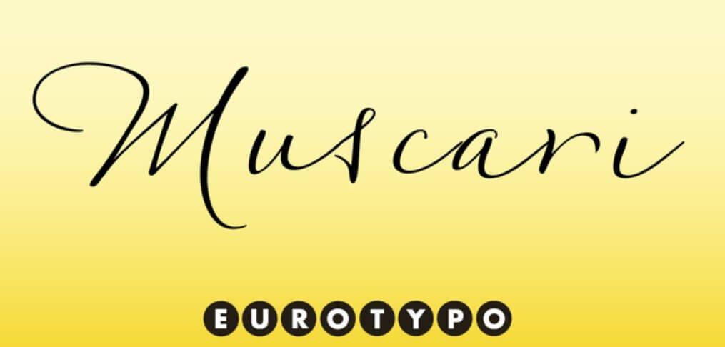 Muscari Font