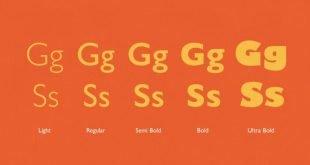 gill sans font 310x165 - Gill Sans Font Free Download