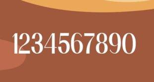 Sans Jose Pro Font 310x165 - Sans Jose Pro Font Free Download