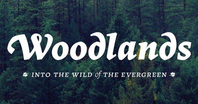 Woodlands Font