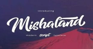 Wild Youth Brush Font