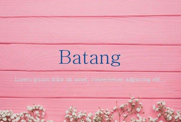Batang Font