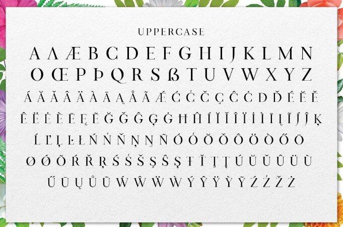 Turkish Font
