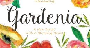 gardenia font 310x165 - Gardenia Script Font Free Download