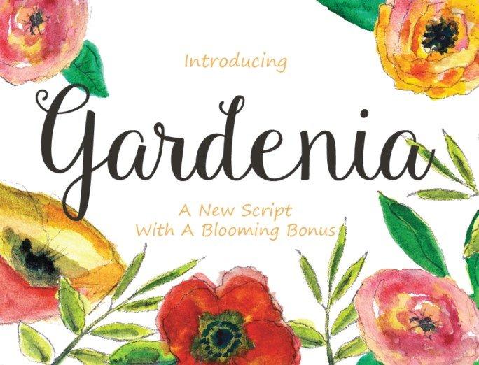 gardenia font - Gardenia Script Font Free Download