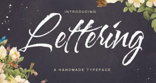lettering script font 310x165 - Lettering Script Font Free Download