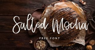 salted font 310x165 - Salted Mocha Font Free Download