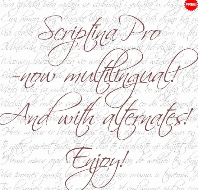 scriptina font - Scriptina Pro Font Free Download