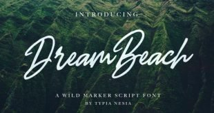 dream beach font 310x165 - Dream Beach Script Font Free Download