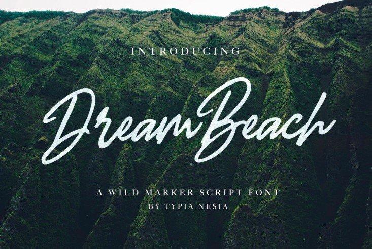 dream beach font - Dream Beach Script Font Free Download